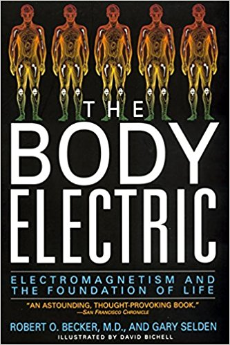The Body Electric: Electromagnetism And The Foundation Of Life by Robert O. Becker and Gary Selden