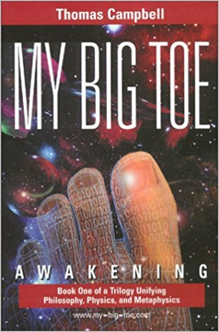 My Big TOE: Awakening by Thomas Campbell
